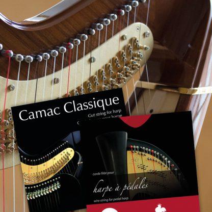 Cordes pour harpes à pédales