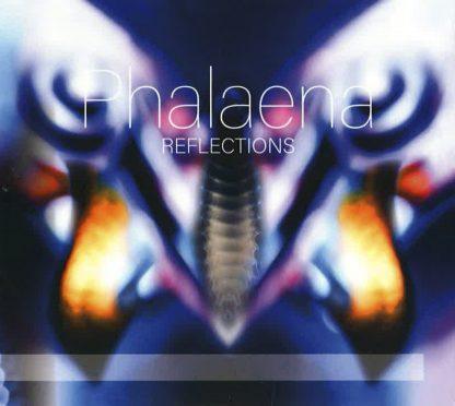 Trio Phalaena : Phalaena